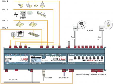RM8 diagram